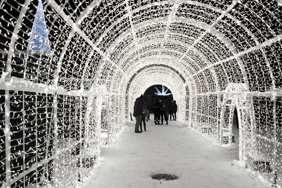 Christmas Walk - Olympic Manor, Ballard