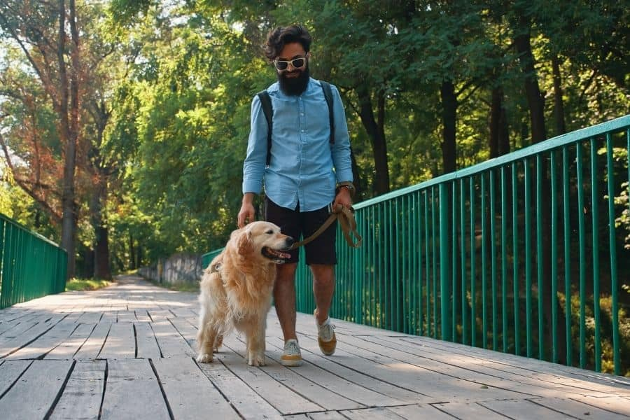 The Benefits of Structured Walks