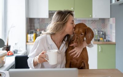 5 Ways to Encourage Positive Behaviors in Your Dog