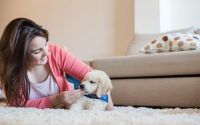 7 Behaviors to Look Out for in a New Puppy